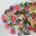 c_120_120_16777215_00_images_646-DomoweAkadero_78.jpg